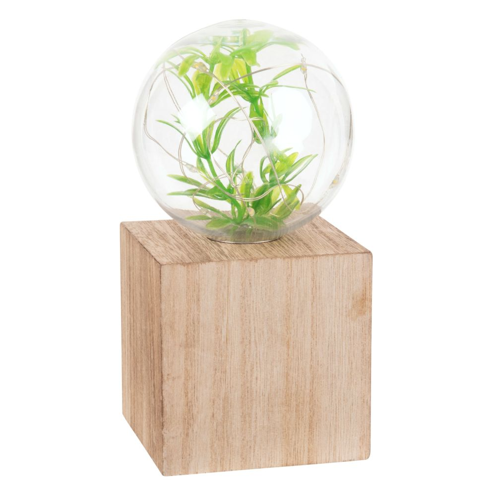 Déco lumineuse terrarium à LED (photo)