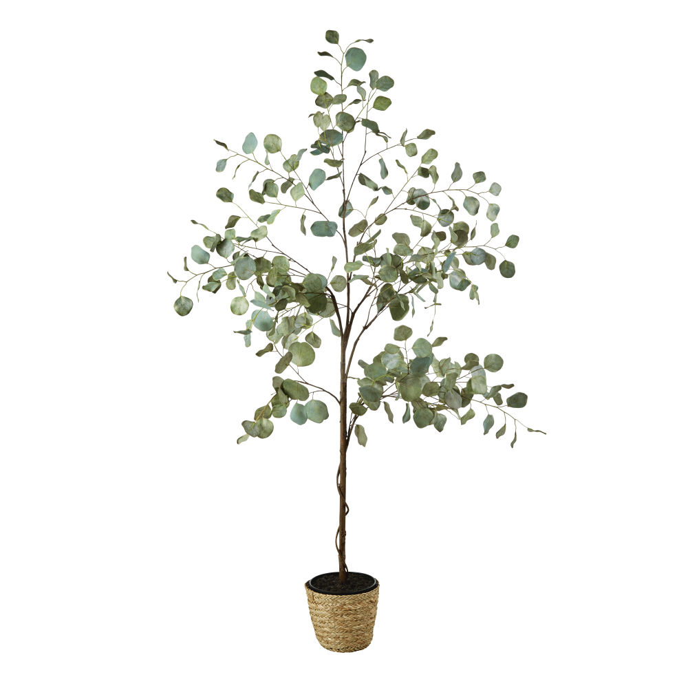 Eucalyptus artificiel et pot tressé H176 (photo)