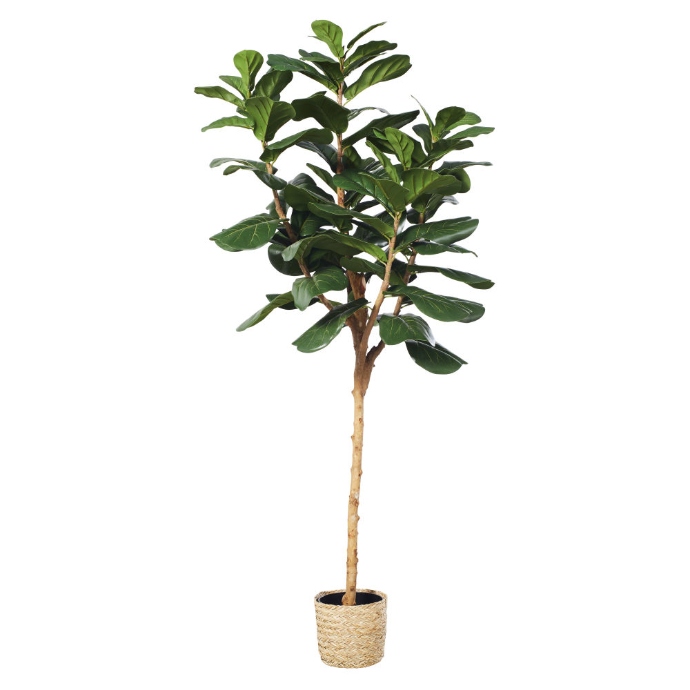 Ficus artificiel et pot tressé (photo)