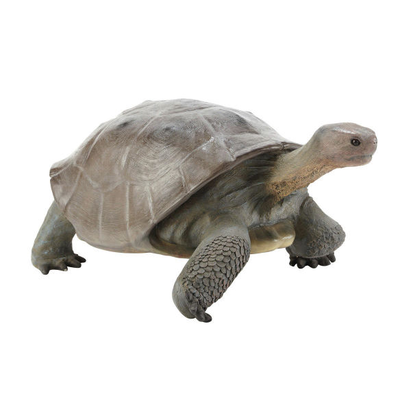 Statue tortue L 152 cm GALAPAGOS (photo)